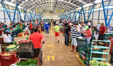 Coordenador do Ceasa Serra explica a alta de preços dos hortifrutigranjeiros nessa época do ano